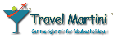 Travel Martini Logo